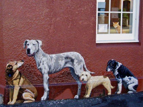 Dogs by Peter Gouldthorpe in Hobart, Tasmania.